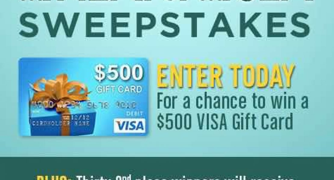 Win a 500 visa gift card from warner bros whole heart and home win a 500 visa gift card from warner bros negle Choice Image